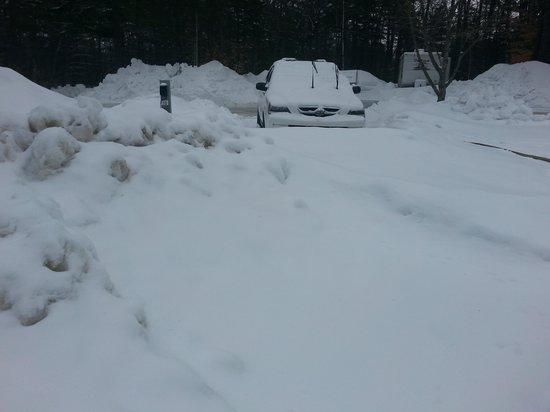 Danforth Bay Camping & RV Resort: Buried utilities