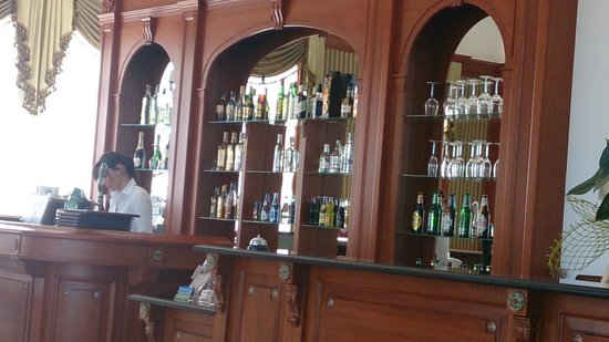 Hotel Lancut : The bar in the lobby