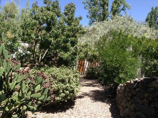 Parador del Angel: the lovely garden