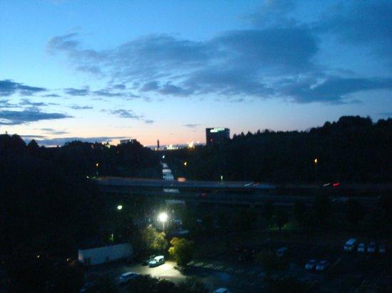 ANA Crowne Plaza Hotel Narita: view from my room4