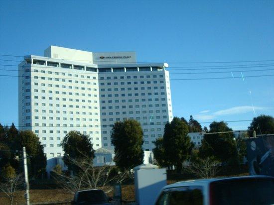 ANA Crowne Plaza Hotel Narita: view of the hotel