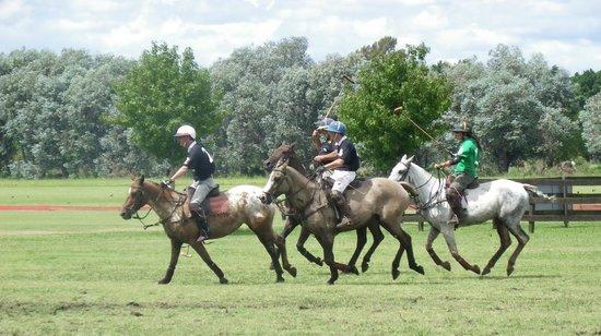 Argentina Polo Day : polo