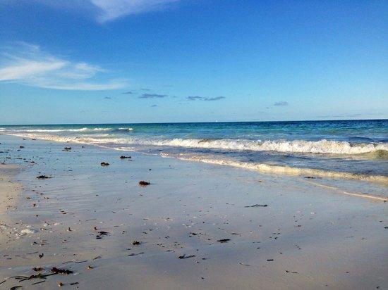 Hakuna Majiwe Beach Lodge : Spiaggia davanti al resort