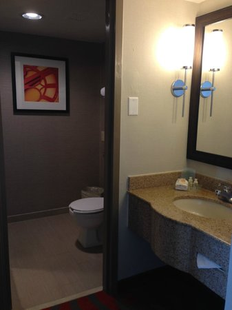 Holiday Inn Harrisburg/Hershey: bathroom with good shower