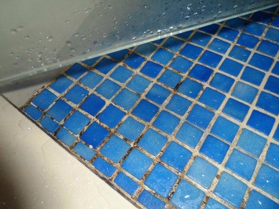 Hotel Costa Del Sol: moho en los baños!!!