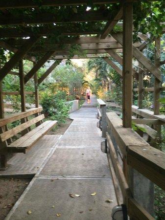 Crystal Paradise Resort : Entry Way