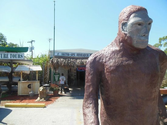 Skunk Ape Research Center