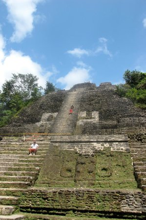 Lamanai Outpost Lodge: What goes up must come down--climbing the High Temple at Lamanai Ruins