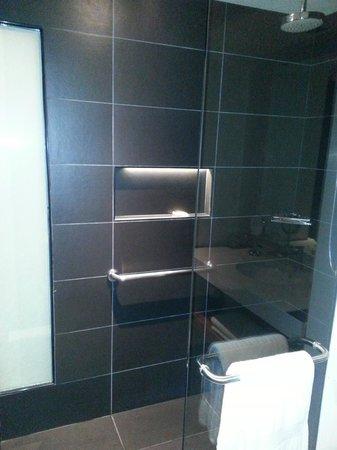 Sheraton San Jose Hotel: Shower