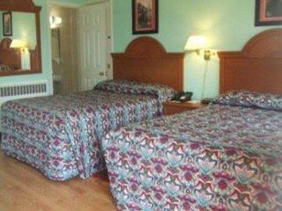Robin Hood Motel : Guestroom