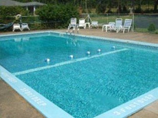 Robin Hood Motel : Pool