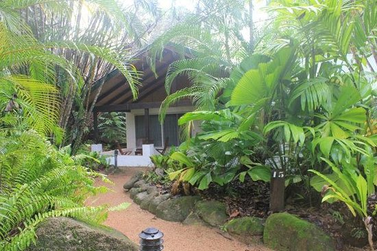Kewarra Beach Resort & Spa : Deluxe Bungalow 15