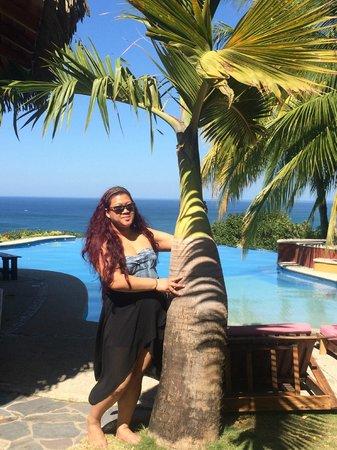 Hotel Vista de Olas: i wanted to bring this palm tree back :(