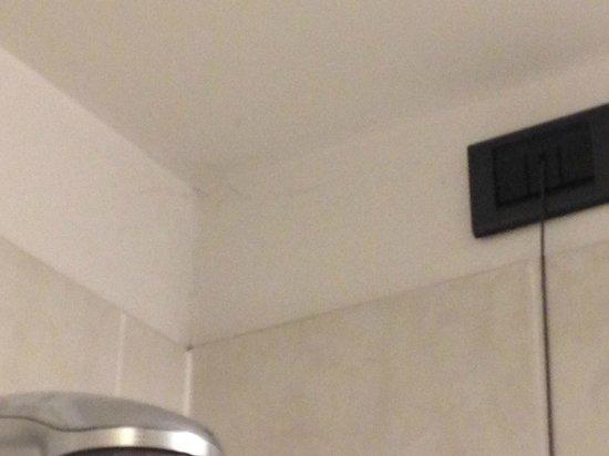 Holiday Inn Turin City Center : teia de aranha no teto!
