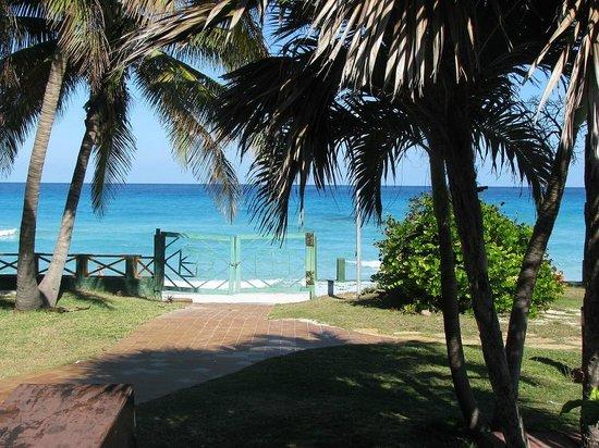 Papo's House : Playa
