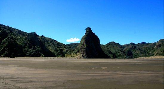Te Huia Tours: Karekare & Piha Beach Tour - Karekare Beach