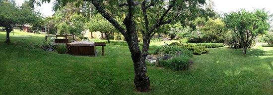 Driftwood Village: The lovely garden hot-tub