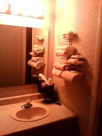 Caprice Motor Inn Branson : part of bathroom