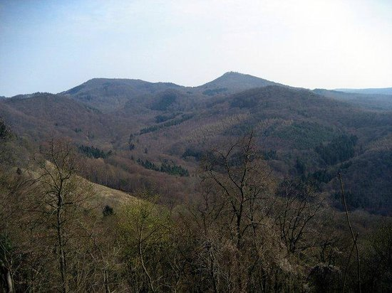 Drachenfels: Siebengebirge