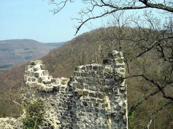 Drachenfels: Schlossruine