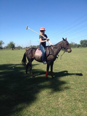 Polo Elite: My quick pose before putting down the mallet & just riding