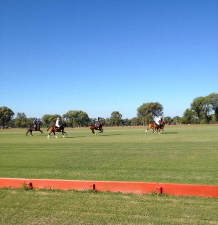 Polo Elite: The polo game we watched while picnicing