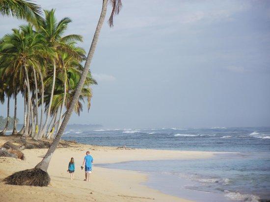 Sirenis Punta Cana Resort Casino & Aquagames: plage de l hotel