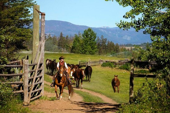 Echo Valley Ranch & Spa: Horseback Riding