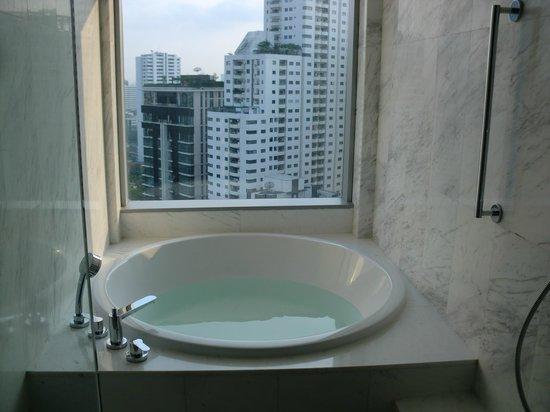 Bangkok Marriott Hotel Sukhumvit : 眺めの良いバスルーム
