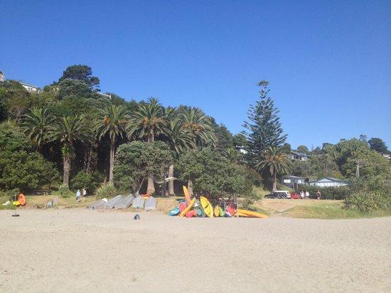 Simply B : palm beach