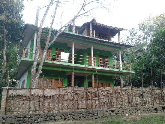 Jungle Inn Cottage