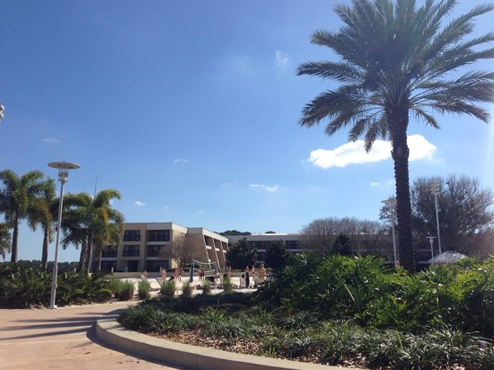 Disney's Contemporary Resort: Beautiful day at the pool