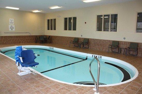 Holiday Inn Express Ludlow : Swimming Pool