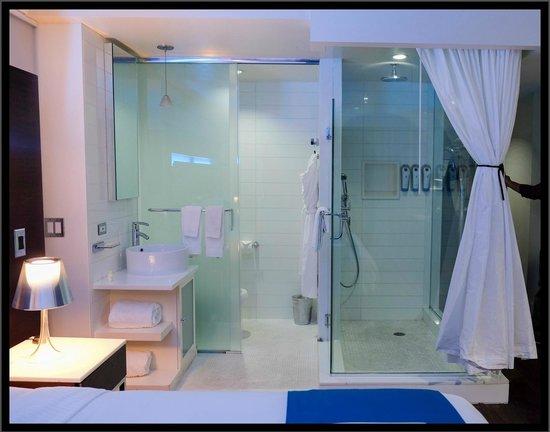 Hotel Le Bleu : Le Bleu Bathroom