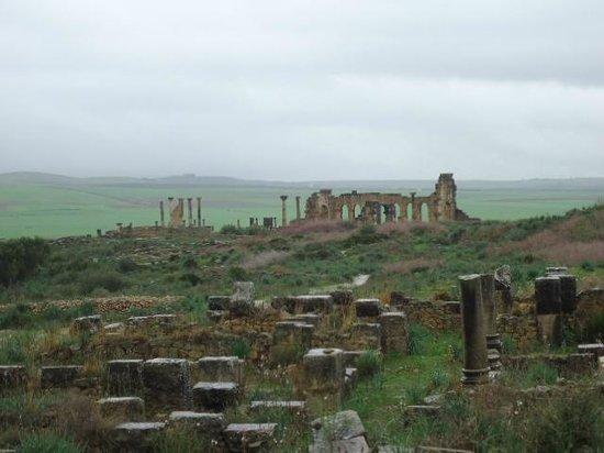 Volubilis: Great Roman ruin.