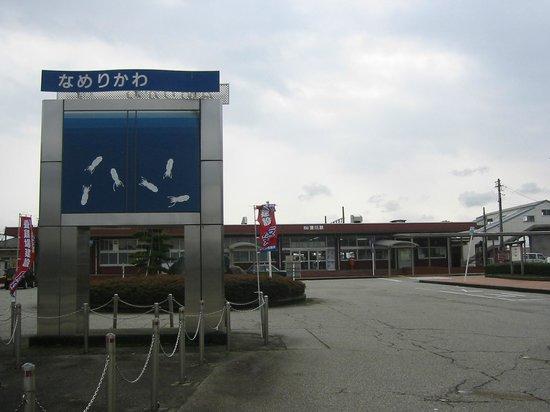 Firefly Squid Museum: ほたるいかの町 滑川