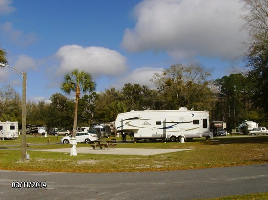 Cedar Key RV Resort : This is our RV site at Cedar Key Rv. Total 5 star *****