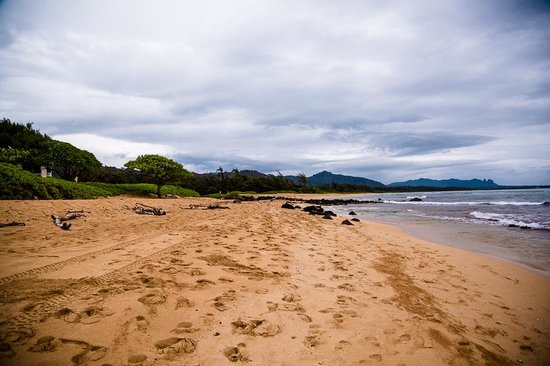 Kauai Beach Resort : Beach outside the hotel