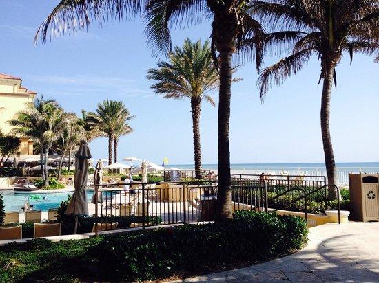 Eau Palm Beach Resort & Spa: Poolside at Eau Resort
