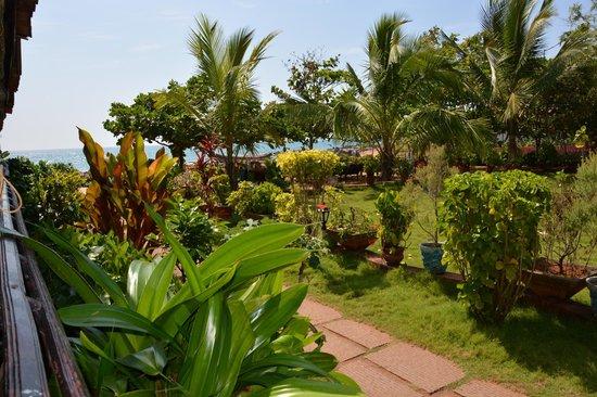 Palm Tree Heritage: Hotel-Garten