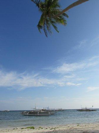 Lost Horizon Beach Dive Resort: Участок пляжа у отеля