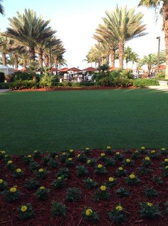JW Marriott Marco Island Beach Resort: from lobby to pool