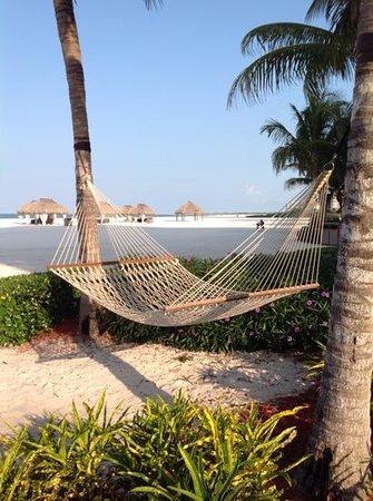 JW Marriott Marco Island Beach Resort: what a great beach/sunsets