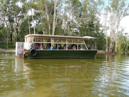 Hartley's Crocodile Adventures : Boat Cruise