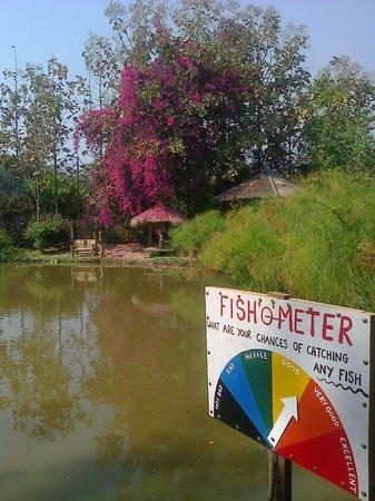 Pai Piranha Fishing Park : un des etangs paisible tout  en sirotant un pti pastis ;)