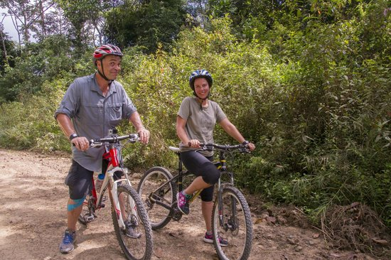 Bike and Tours: Humor and fun all the way