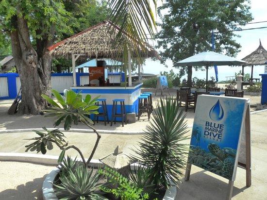 Blue Marine Dive: Bar