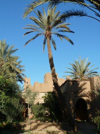 Riad Tabhirte: Vue depuis le potager sur le riad voisin