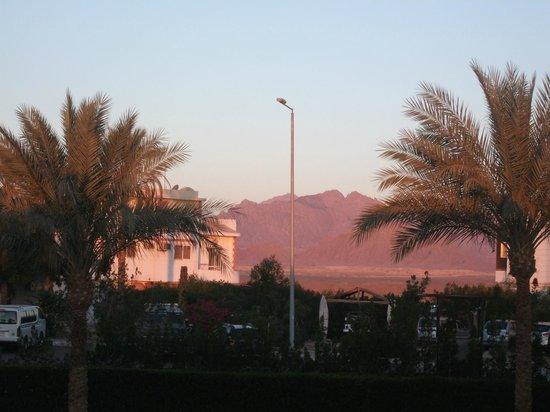 Tivoli Hotel : вид из окна