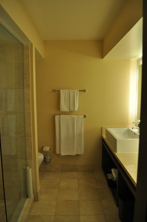 Hyatt Regency Monterey Hotel and Spa on Del Monte Golf Course : Bathroom